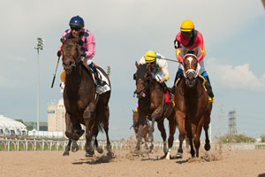 Luis Contreras guides #2 Tiz Imaginary (pink silks blue cap outside) to victory in the $150,000 Fury Stakes at Woodbine Racetrack. Photo by Michael Burns Photography