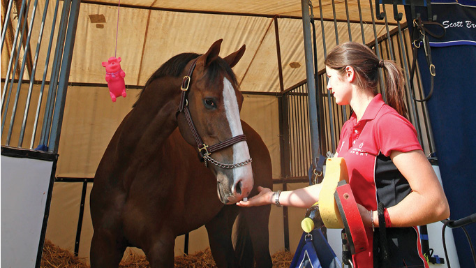 Thumbnail for A Place for Everything – On the Road with Pro Groom Hannah Colman