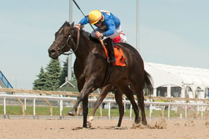 River Maid, piloted by Gary Boulanger, won the $125,400 Ballade Stakes, at Woodbine. Photo by Michael Burns Photography