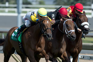 Alan Garcia guides Interna Bourbon (#5 yellow silks) to victory in the $100,000 Zadracarta Stakes. Photo by Michael Burns Photography