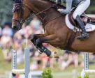 Beth Underhill of Schomberg, ON, and Count Me In won the $100,000 CSI2* Classic on Sunday, July 24, to conclude the CSI2* Ottawa International Horse Show at Wesley Clover Parks in Ottawa, ON. Photo by Ben Radvanyi Photography