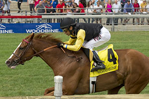Messi wins the Sky Classic at Woodbine. Photo by Michael Burns Photography