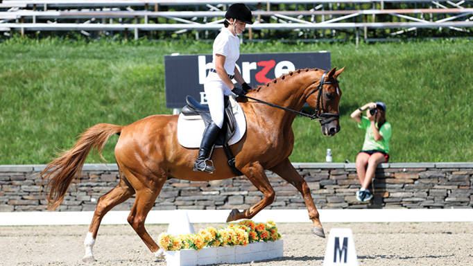 Thumbnail for Jump into Dressage