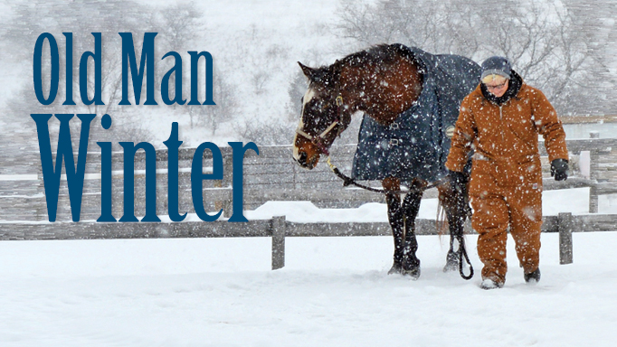 "Thumbnail for Winter Care for ""Delicate"" Horses"