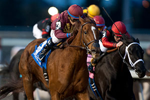 Alan Garcia guides Freitag to victory in the $125,000 Sir Barton Stakes at Woodbine. Photo by Michael Burns