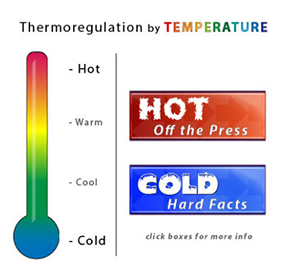 Thumbnail for New Online ThermoRegulator Tool