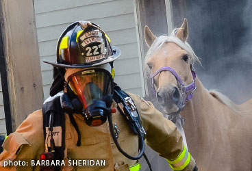 Thumbnail for Fire Safety Tips from Equine Guelph
