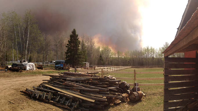 Thumbnail for Fort Mac Horse Owners Recovering After the Fire