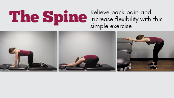 Thumbnail for Increasing Flexibility in Your Spine