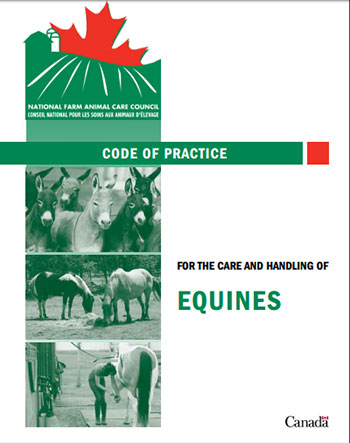 Thumbnail for Are You Following the Equine Code of Practice?