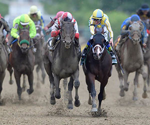 Cloud Computing takes the Preakness Stakes, piloted by Javier Castellano. Preakness Stakes Photo