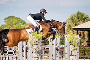 Angela Covert and Utan won the $25,000 Grand Prix at Fox Lea Farm Spring Concours II in Venice, Florida. Photo by Victoria DeMore.