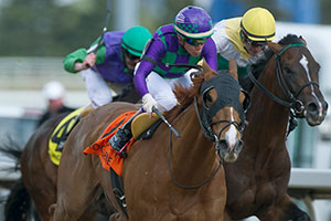 Luis Contreras guides Keen Gizmo to victory in the $125,000 Steady Growth Stakes at Woodbine. Photo by Michael Burns