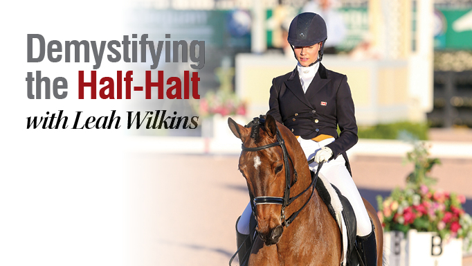 Thumbnail for Demystifying the Half-Halt