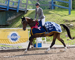 Jordan Linstedt (USA) and Revitavet Capato at the 2017 PEDIGREE® Bromont CCI Three Day Event, The Todd Sandler Challenge at the Bromont Olympic Equestrian Park in Bromont, Quebec. Photo: Cealy Tetley