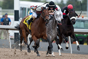 Rafael Hernandez guides Minks Aprise to victory in the $100,000 Trillium Stakes at Woodbine. Photo by Michael Burns