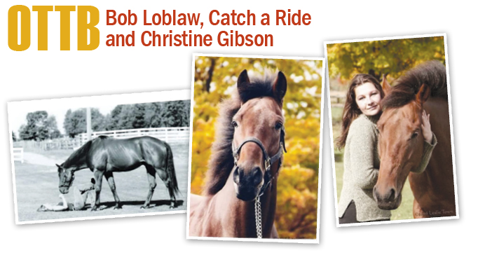 Thumbnail for OTTB: Bob Loblaw and Catch a Ride