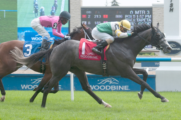 Thumbnail for An early look at the Breeders' Stakes