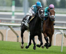 Glenville Gardens (2) winning on July 22 at Woodbine Racetrack. Photo by Michael Burns