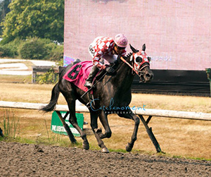 My Aunt Mo was the easy winner in the Hard Rock Casino with Mario Gutierrez aboard. Photo by Patti Tubbs