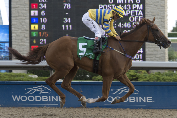 Thumbnail for Pink Lloyd chasing the money on Canadian Millions night