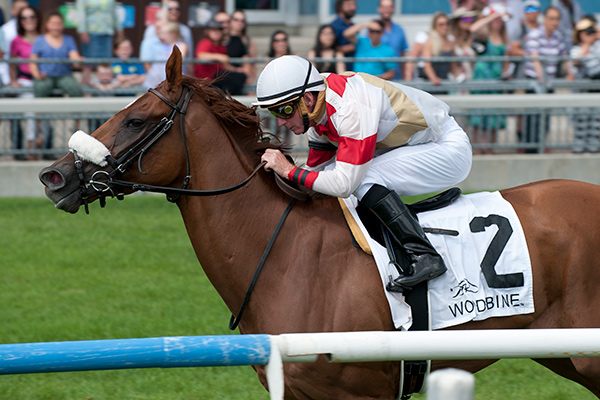 Gary Boulanger guides Dragon Bay to victory in the $175,000 Grade II Nijinsky Stakes. Photo by Michael Burns