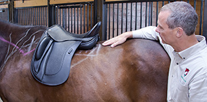 Jochen Schleese pointing to the last supportive rib of this horse's saddle support area (SSA). This is a critical point to which the saddle should not sit past to ensure the horse's comfort and freedom of movement. This particular saddle sits well within the bounds of this particular horse's SSA.