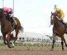 Latonka winning the $125,000 Bull Page Stakes on Monday, Oct. 9 at Woodbine Racetrack. Photo by Michael Burns