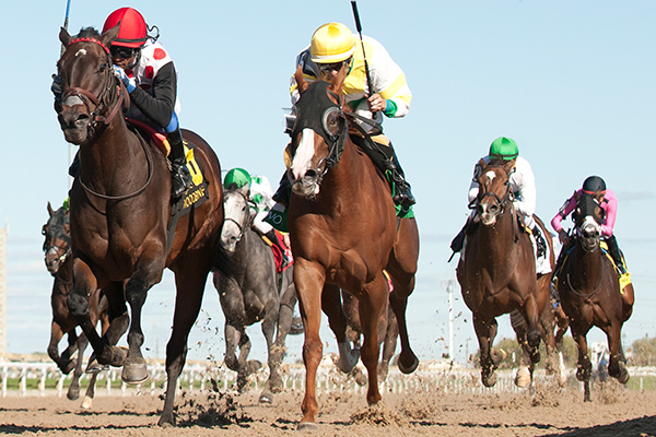 Let It Ride Mom defeated Ghostly Presence by a neck in the $100,000 La Lorgnette Stakes on Saturday, Sept. 30 at Woodbine Racetrack. Photo by Michael Burns Photography