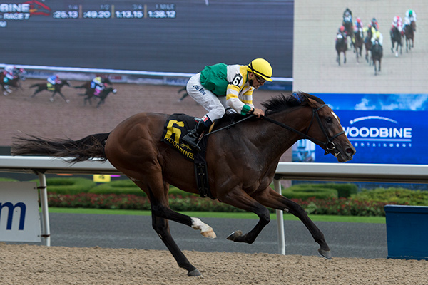 Tiz a Slam won the Ontario Derby. Photo by Michael Burns