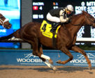 Gigantic Breeze winning the $175,000 Autumn Stakes (Grade 2) on Sunday, Nov. 12 at Woodbine Racetrack. Photo by Michael Burns