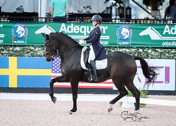 Mathilde Blais Tétreault from Montreal, QC was honoured with the Orion Cup for her successful transition up to the Under 25 Dressage Grand Prix level aboard Utah during the 2017 season. Photo by Susan J. Stickle