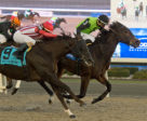 Moonlit Promise winning the $175,000 Bessarabian Stakes on Sunday, Nov. 26 at Woodbine Racetrack. Photo by Michael Burns