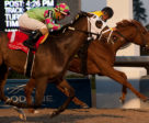Dixie Moon (inside) winning the $125,000 Ontario Lassie Stakes on Sunday, Dec. 3 at Woodbine. Photo by Michael Burns