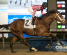Leavem in Malibu winning the $125,000 Valedictory Stakes on Sunday, Dec. 10 at Woodbine.