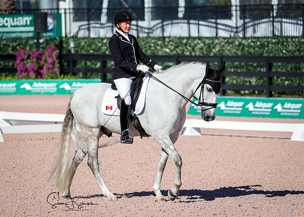 Riding Ultimo, Winona Hartvikson of Langley, BC kicked off 2018 with top-three placings across the board in the Grade I division at the Adequan Global Dressage Festival CPEDI 3*, held on Jan. 4-7 in Wellington, FL. Photo by Susan J. Stickle