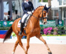 Brittany Fraser-Beaulieu of Saint-Bruno, QC earned impressive results in both the big tour with All In, and in the small tour with Soccer City (pictured) at the Adequan Global Dressage Festival 5, held Feb. 7-11, 2018 in Wellington, FL. Photo by Susan J. Stickle