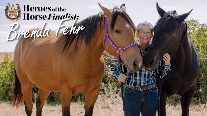 Thumbnail for 2017 Heroes of the Horse Finalist: Brenda Fehr