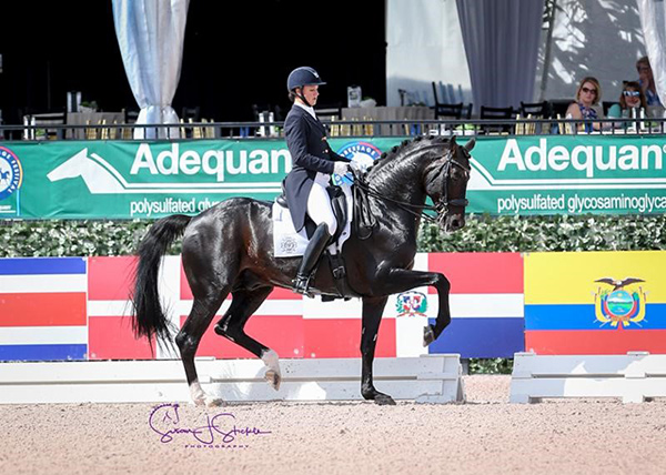 Grand Prix Special CDI5* winners Adrienne Lyle (USA) and Salvino top an all-American podium. Photo