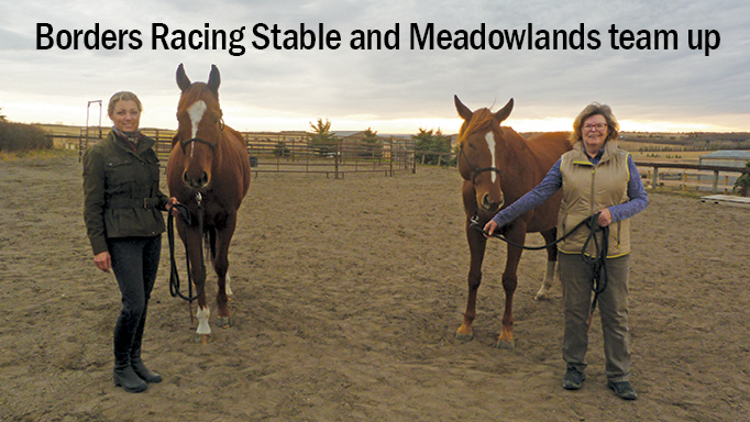 Thumbnail for Borders Racing Stable Invests in OTTB Re-Training