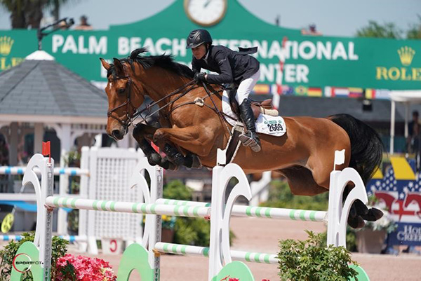 Laura Chapot and Chandon Blue won the $35,000 Hollow Creek 1.50m Classic CSI 3* at the Winter Equestrian Festival. Photo © Sportfot