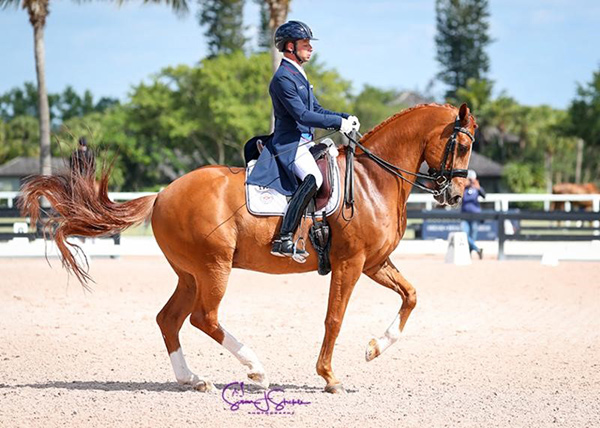David Marcus and Dean Martin won the Grand Prix at the Adequan Global Dressage Festival Week 11. Photo © SusanJStickle.com.