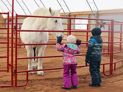 Sam and Erin meet one of Sierra Acres Equine Assisted Healing Centre's therapy horses, Molly.