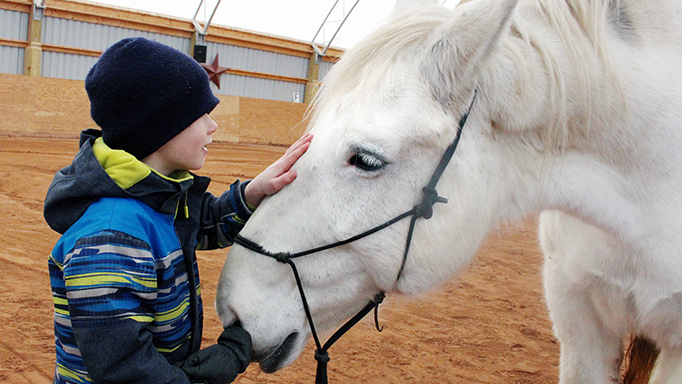 Thumbnail for The Benefits of Equine Assisted Therapy for Children