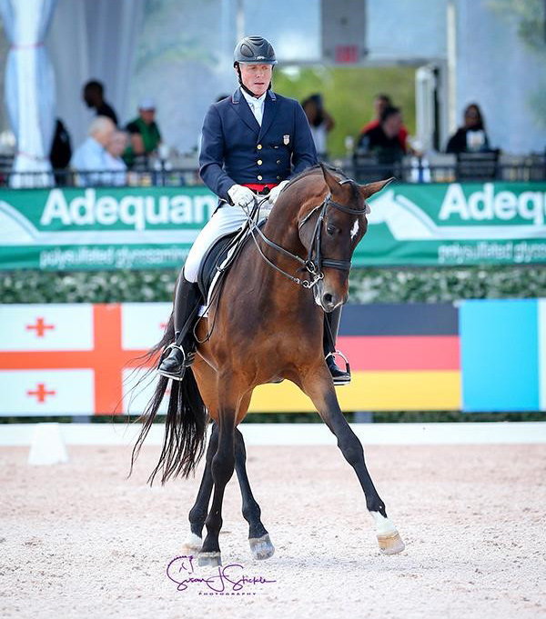 Jan Ebeling (USA) and Ann Romney's 10-year-old Sergio Leone were the only combination to top 70% in the Intermediate I Freestyle CDI3. Photo ©SusanJStickle
