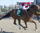 Summer Sunday and jockey Rafael Hernandez winning the $125,000 Fury Stakes on Sunday, April 29 at Woodbine Racetrack.