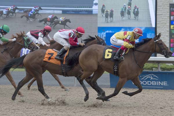 Blurricane and jockey Luis Contreras winning on July 22, 2017 at Woodbine Racetrack.