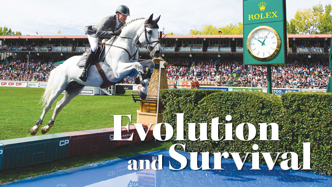 Thumbnail for The Horse Industry's Evolution and Survival