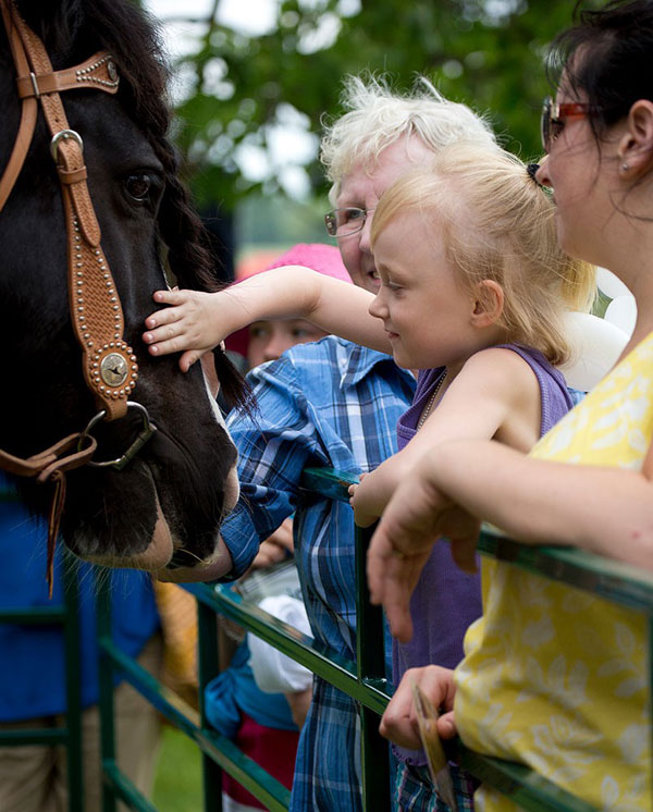 Thumbnail for Horse Day is Galloping Across Canada on June 2