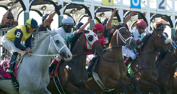 Opening day at Fort Erie Race Track. Michael Burns Photo